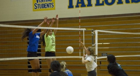 Girls' Volleyball team make region champions