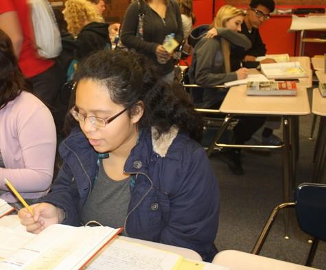Student Spotlight: Ana Zamora