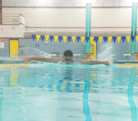 Swim team dives into new season