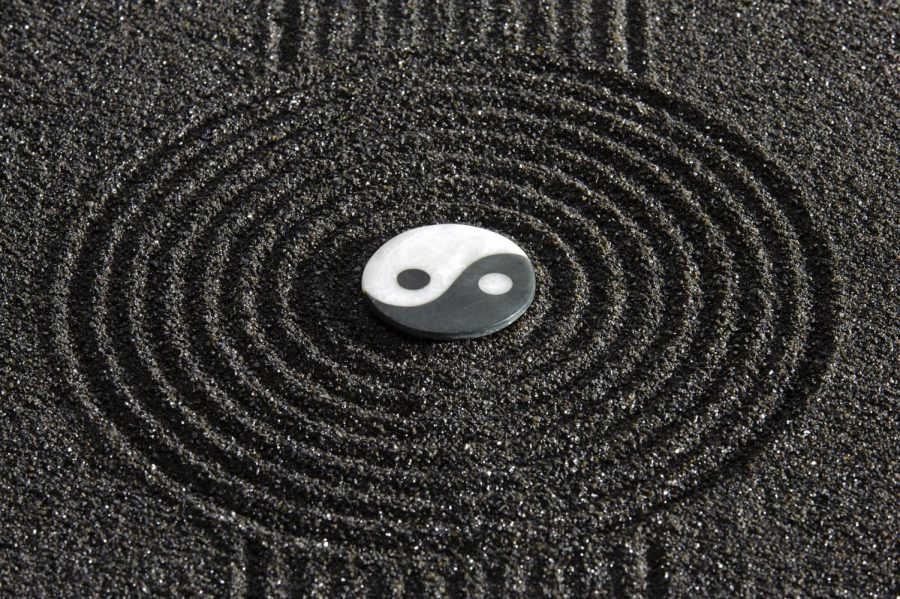 Yin and Yang resembles the balance needed between emotion and logic.
