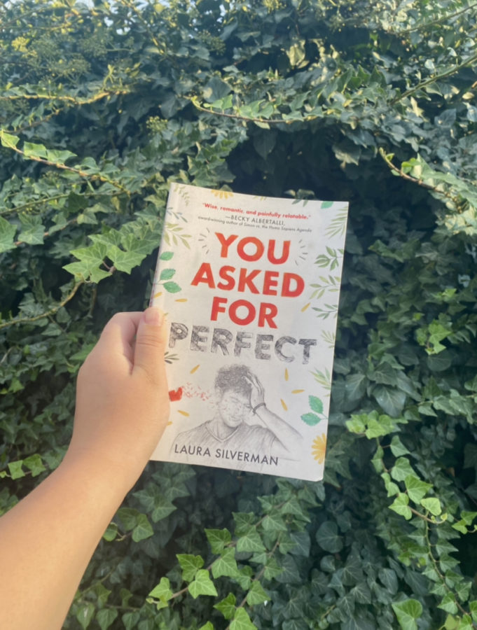 You Asked for Perfect Book Review